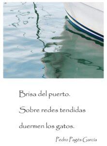 brisa-del-puerto2