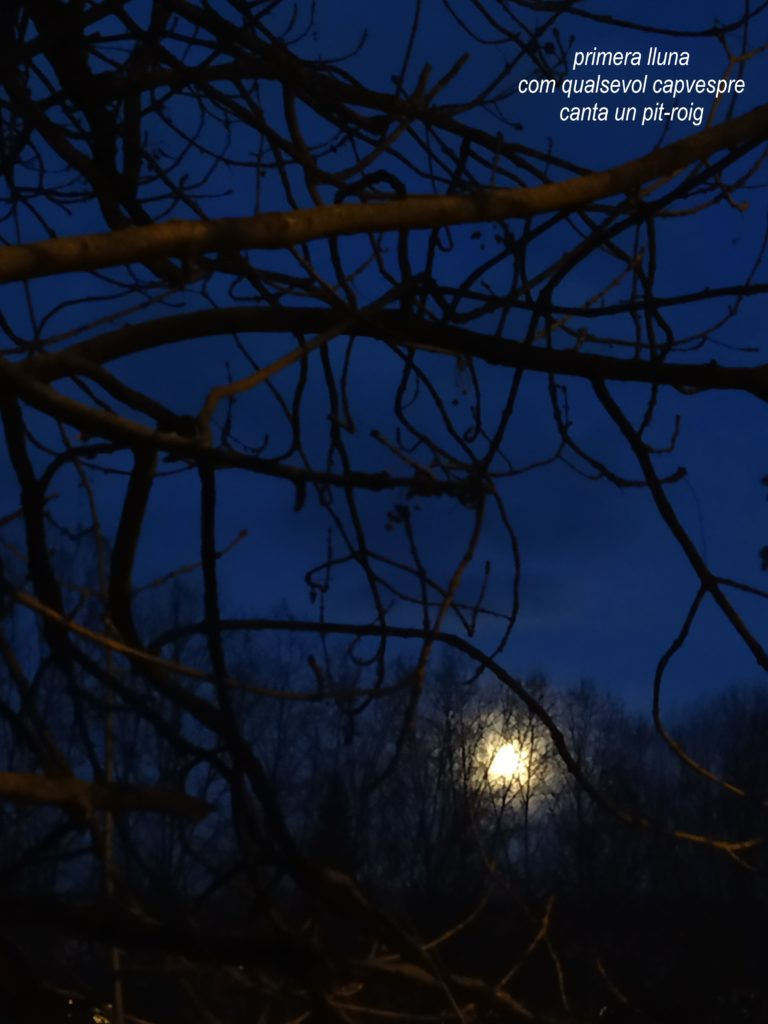 primera lluna 20210128