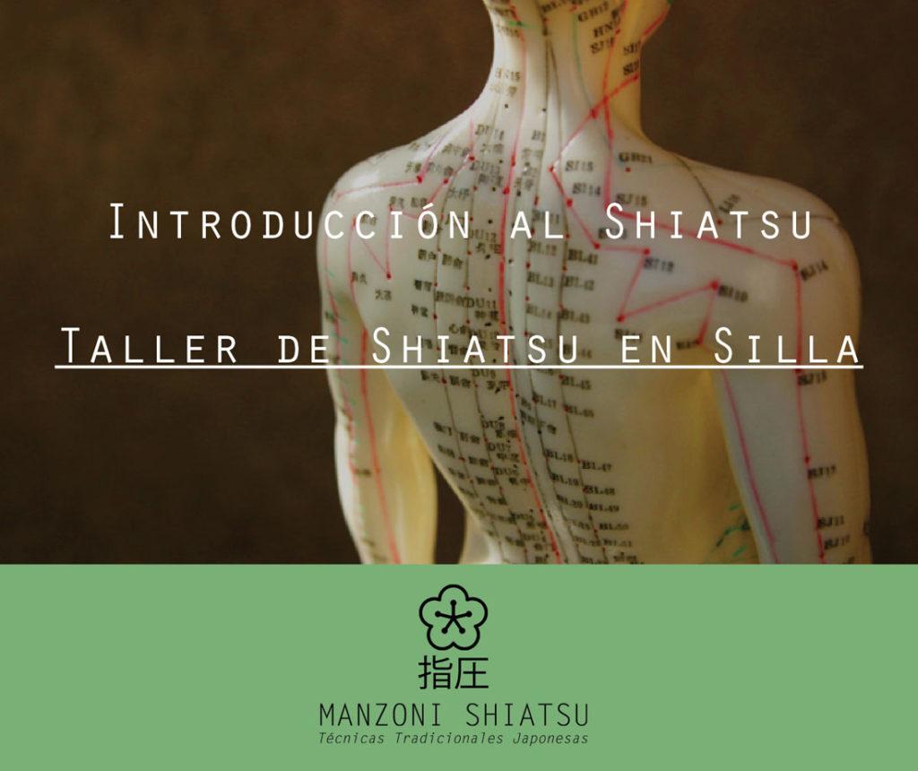 Taller Shiatsu Silla